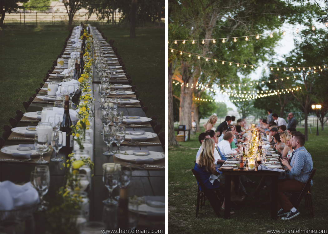Royal table style reception with hanging bistro lights