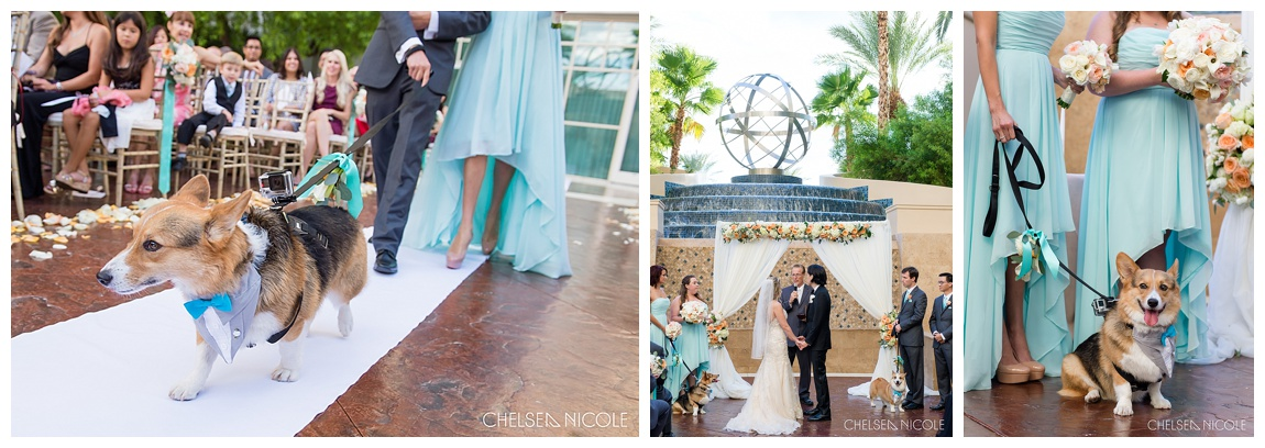Las Vegas Wedding Planner_0034